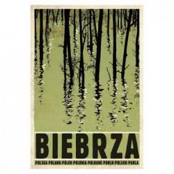 Biebrza, postcard by...
