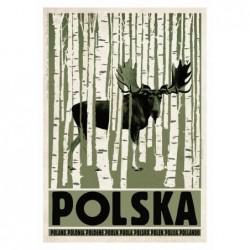 Polska z łosiem, postcard...