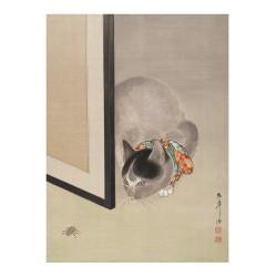 Kot Obserwujący Pająka,...