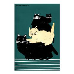 Piramida kotów, pocztówka...