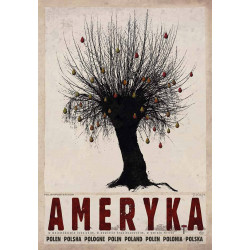 Ameryka, postcard by...