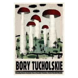 Bory Tucholskie, pocztówka,...