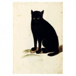 Catus Niger, pocztówka,...