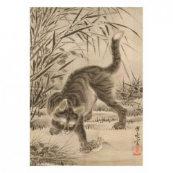Kot Łapiący Żabę,...