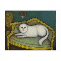 Angora Cat, postcard by...